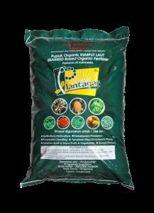plantagar-seaweed-fertilizer