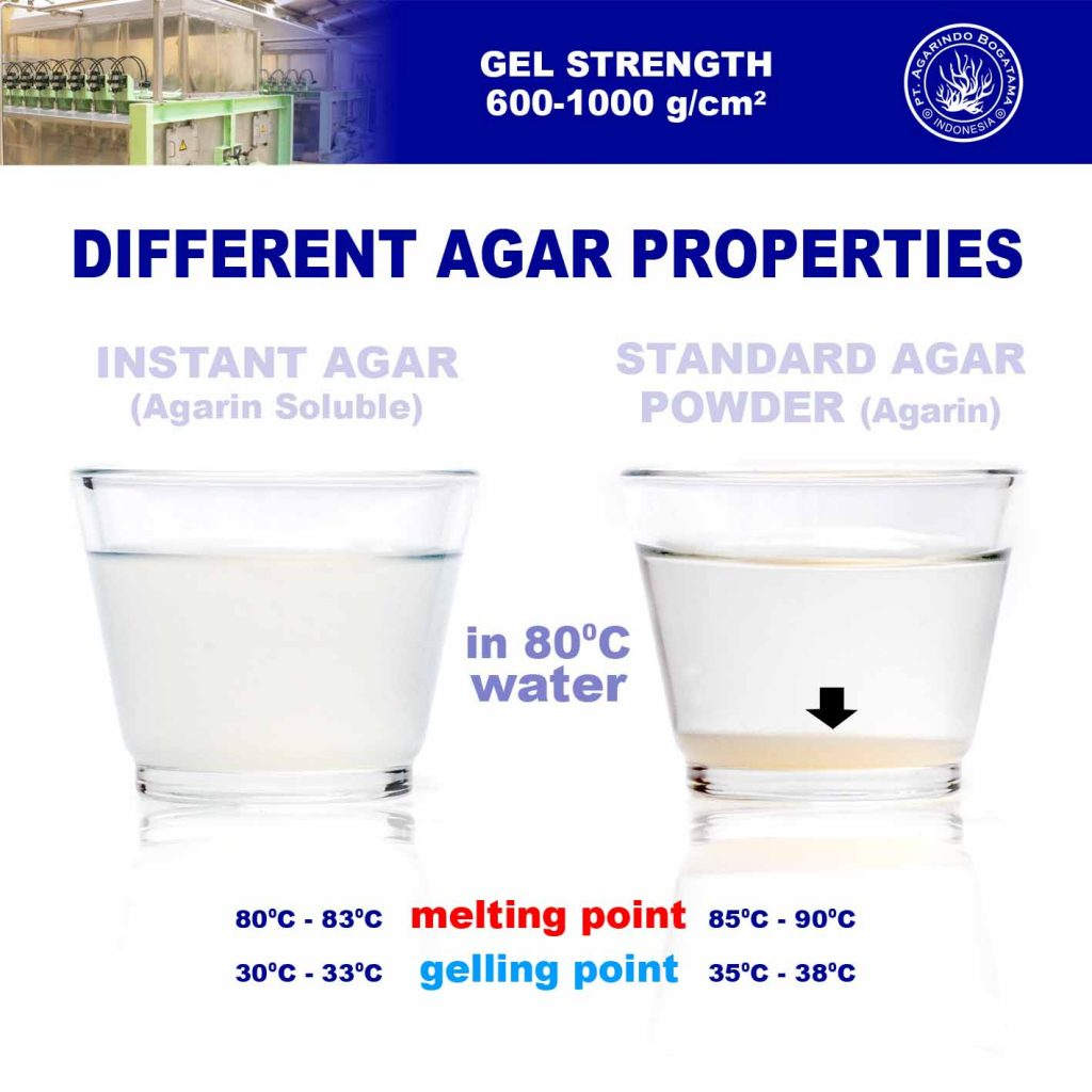 different-agar-properties-instant-agar-vs-agar-powder